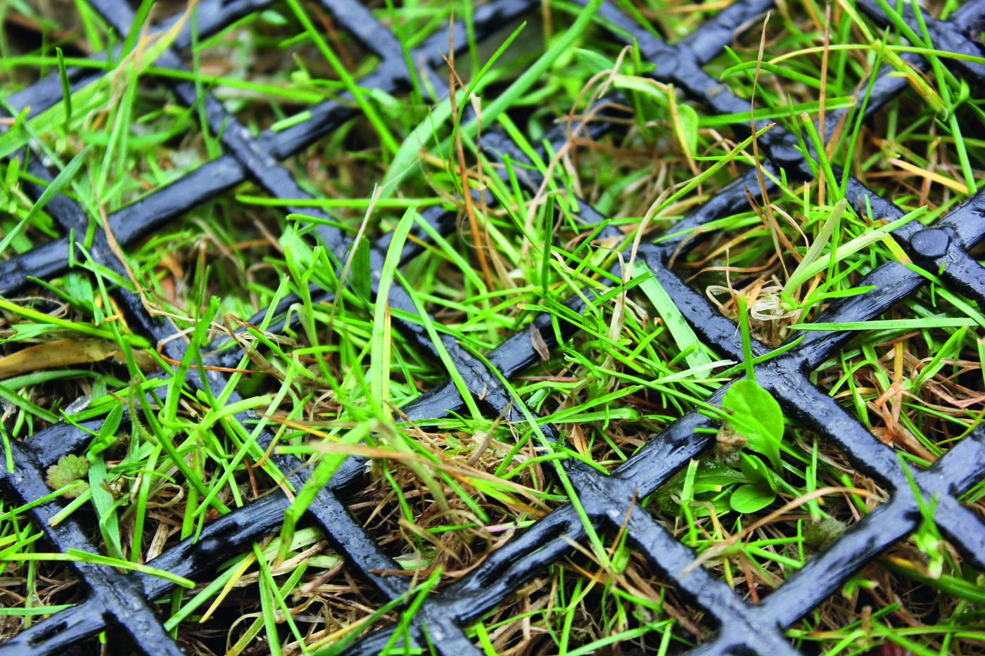 Lawn protection screen mats
